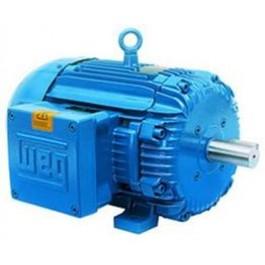 General Purpose NEMA motors