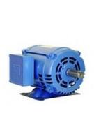 1 HP - 0.75 kW - 1200 RPM - IEEE 841 - Three Phase TEFC - C-Flange - Foot Mount - NEMA Premium Efficiency Motors