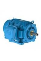 1 HP - 0.75 kW - 1200 RPM - IEEE 841 - Three Phase TEFC - Foot Mount - NEMA Premium Efficiency Motors