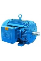 1 HP - 0.75 kW - 1800 RPM - Three Phase TEFC - C-Flange - Footless